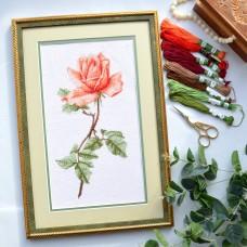 """Tea rose"" - Cross stitch kit"
