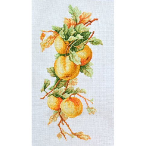 "Cross stitch kit ""Apple tree branch"""